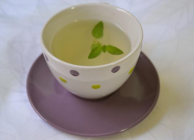 chá de hortelã 1